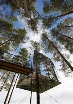 1 Mirror Tree House 9