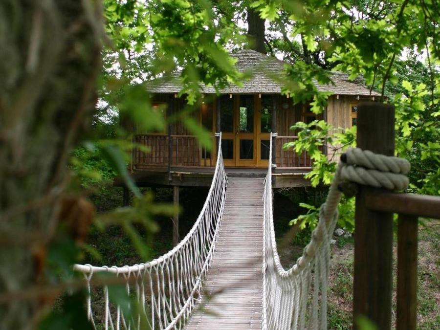 Bensfield Treehouse Featured Unique Property Bulletin