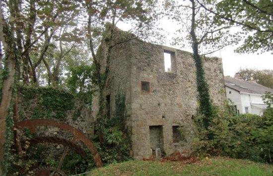 Mill Reskadinnick 1
