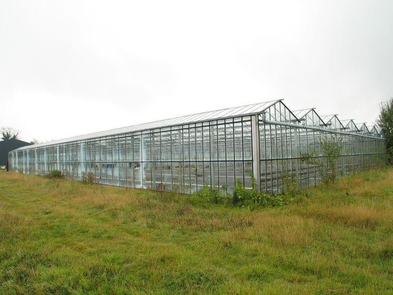 Nurseries Glass Houses