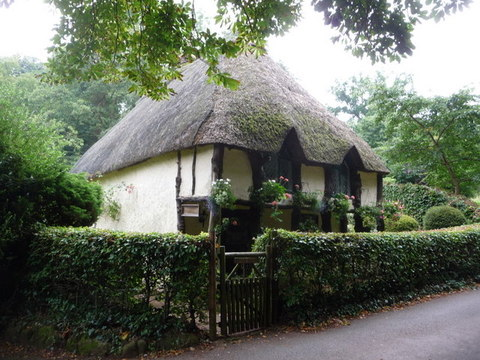 Thatch in Torquay Chris Downer RSZ